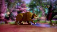Ours légendaire-L'aigle et l'ours légendaires