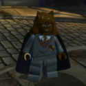 Hermione (Chat)-HP 14
