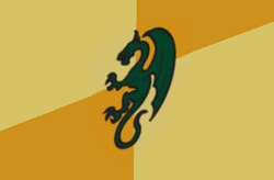 Dragon Knights Flag