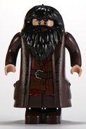 10217 Hagrid