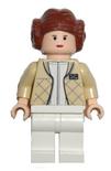Leia Hoth 2