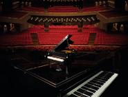 21323 Le piano à queue 12