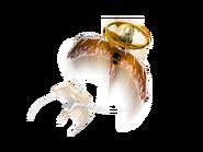 70644 Le maître du dragon d'or 3