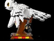 75979 Hedwige 5
