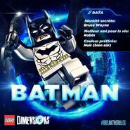 LEGO Dimensions Batman bio