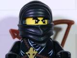Cole - Ninja der Erde