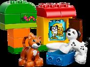 10570 Boîte de briques et d'animaux 4