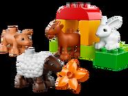 10522 Les animaux de la ferme