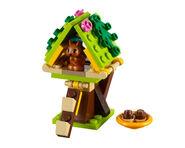 41017 L'écureuil et sa maison 1