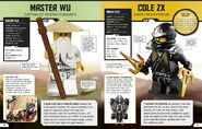LEGO Ninjago Character Encyclopedia Updated and Expanded 1