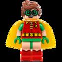 Robin-70916