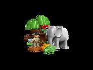 5634 Le repas des animaux du zoo 4