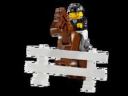 7635 Le transport de chevaux 5