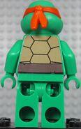 Raphael back