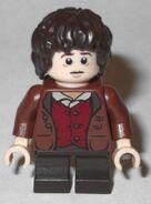 79006 Frodo