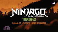 Les ondes libres de Ninjago