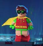 Normal TLBM Robin