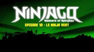 Le ninja vert