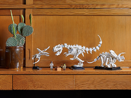 21320 Les fossiles de dinosaures 22