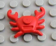 33121 Crab
