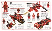LEGO Ninjago The Visual Dictionary 1