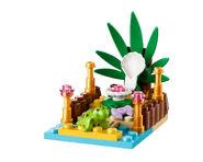 41019 La tortue et son oasis 2