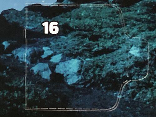 75245 Case 16 DY