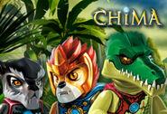 Chima blog 310x210
