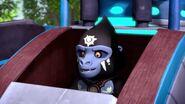 Gorzan-Vibe of the Mellow Head Dude