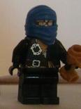 Blue Ninja (BLUDHAVEN)