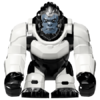Winston-75975