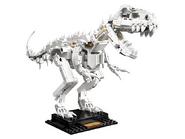 21320 Les fossiles de dinosaures 3