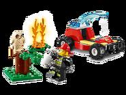 60247 Le feu de forêt 3