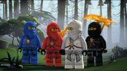 Ninjas-La famille de Zane