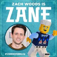Vignette Ninjago Movie Zach Woods