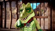 Crawley-Des larmes de Crocodiles