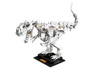 21320 Les fossiles de dinosaures 2