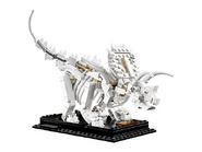 21320 Les fossiles de dinosaures 5
