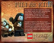 Fili and kili bio