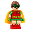 Robin-70905