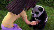 Bambou ventre-À la recherche du futur marié