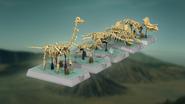 Ideas Projet Dinosaur Fossils