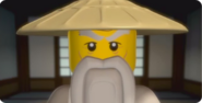 Sensei Wu Close-Up