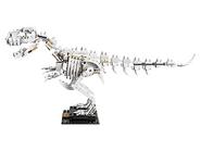 21320 Les fossiles de dinosaures 17