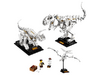 21320 Les fossiles de dinosaures
