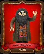 Carte Rubeus Hagrid-4738