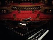 21323 Le piano à queue 13