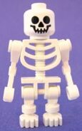 4195 Skelett