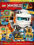 LEGO Ninjago 21