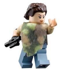Princess Leia Endor